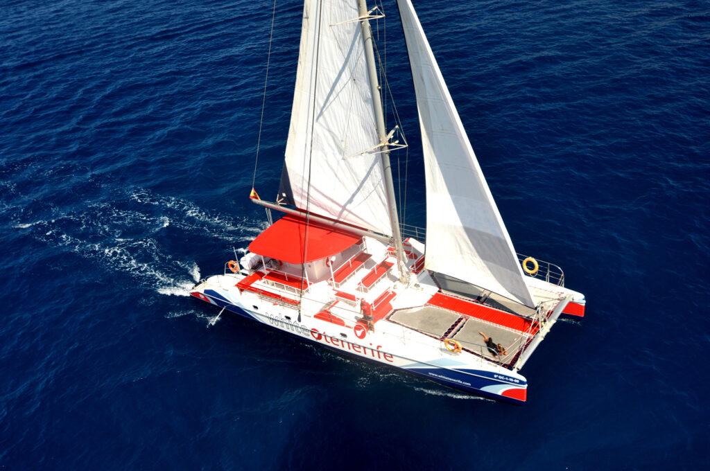 Catamarán White Tenerife baja