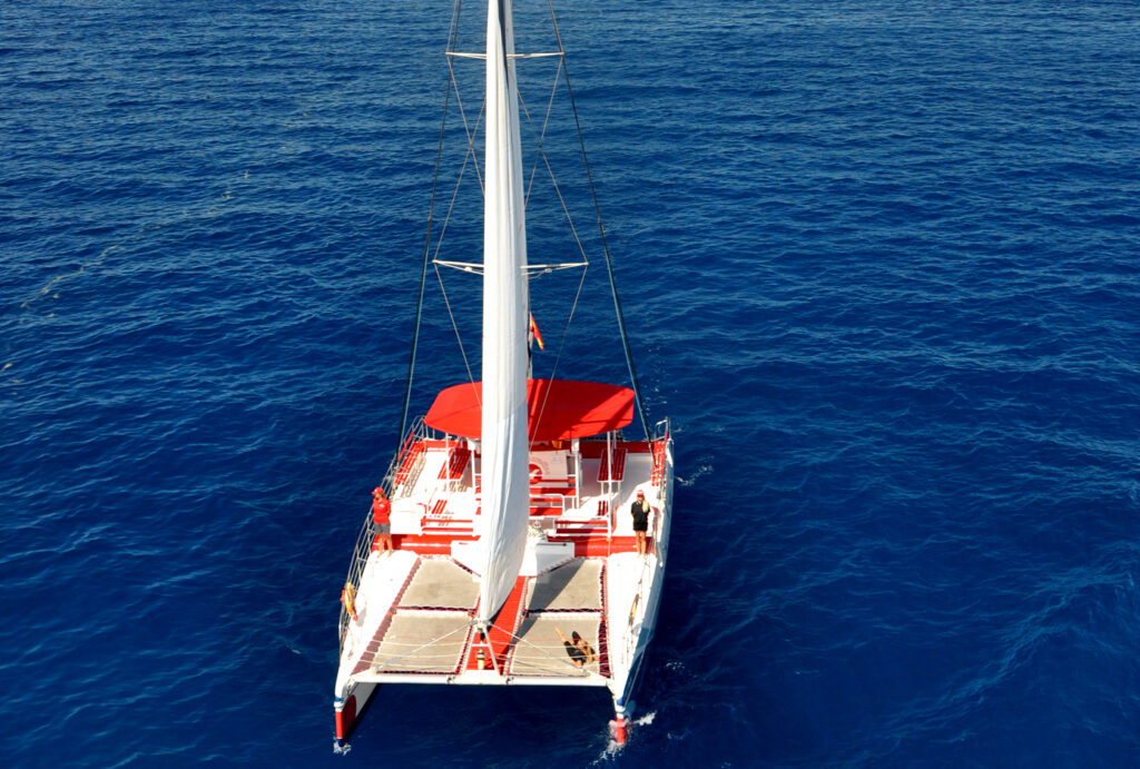 White Paradise frontal navegando (hor)